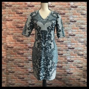 Anthropologie Baraschi Sketched Lace Bodycon Dress